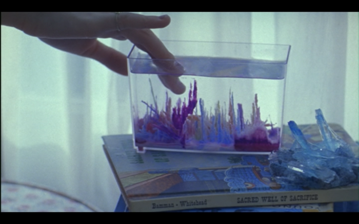 Image illustrant l'article. Capture d'écran du film Virgin Suicides de Sofia Coppola. Une main qui touche des magic rocks multicolores dans un petit bac.