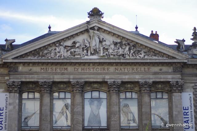 2012-12-06_02-museum-blog