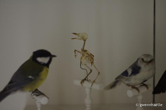 2012-12-06_14-museum-modif-blog