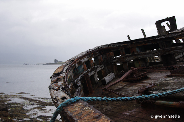 2014-07-03_16-Isle_of_Mull-epaves-blog